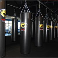Heavy Bag - Overhead Gyms